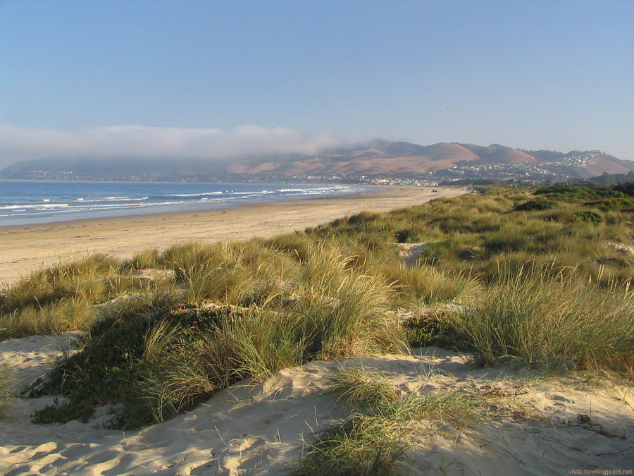Coastal Dunes: The local sign called this Pismo State Beach, but my map shows it as Pismo Dunes Preserve. Regardless, a beautiful view taken around 7:30 a.m.
