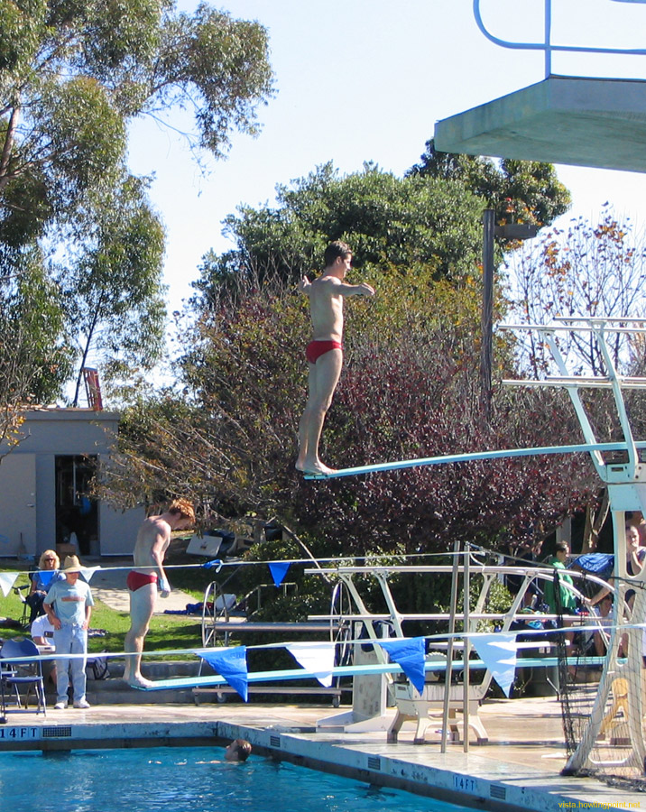 Busy boards: Utah divers warming up on the one- and three-meter springboards at UCSD's Canyonview Pool.