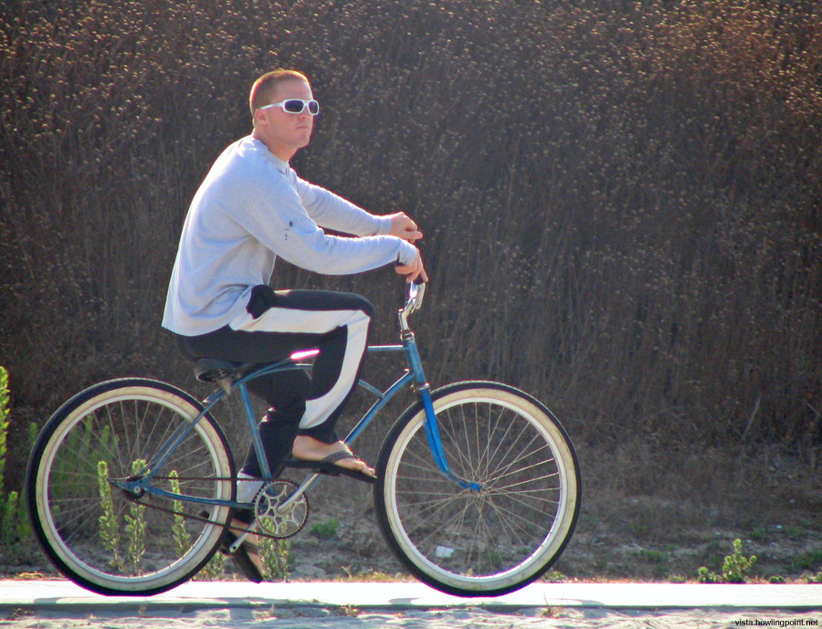 Just cruising: He was just checking things out from the Mission Bay bike/jogging path on this Saturday morning.